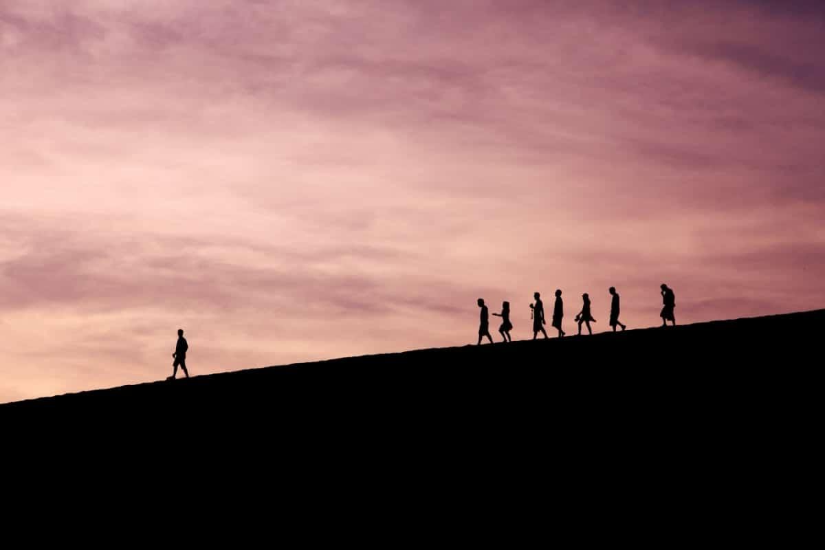 Gode ledere accepterer og finder fred med kaos